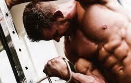 muskler_4